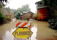 flood survey   flood study   flood zone